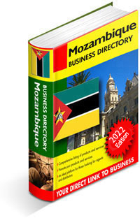 Mozambique Importers Database: Africa Importers Database